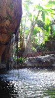 Jungle Waterfall by MountainPoint