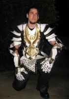 Leather Paladin Armor - Pic 3 by Azmal