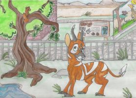 Bongo at the Zoo by KM-cowgirl