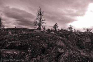 rolling storm by wheeler-photographic