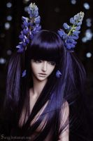 Lady Lupine by Sarqq