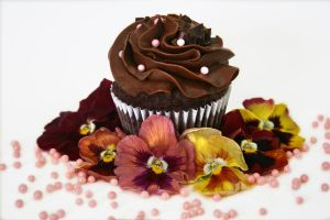 Chocolate Port Cupcake by FightTheAssimilation