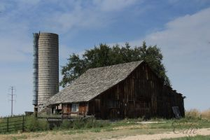 Weld County Barn by 1001G