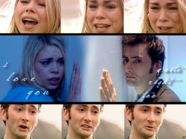 Doctor Who: Leaving Rose by FairyWish23