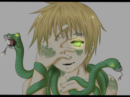 Hetalia: Cold Hearted Snake by Hawaiian-Brit