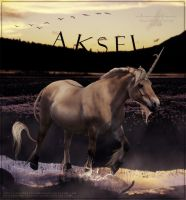 Aksel by Unknownandfrantic