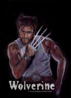 Hugh Jackman as Wolverine by LinzArcher