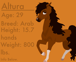 Altura Ref by flawless-brony