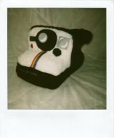 Polaroid 1000 by walking-cripple