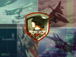 Ace Combat 5 by Godsmen