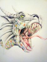 Dragon by Emma-Louise-Faeries