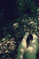 part of the forest. by TheNamesLauren