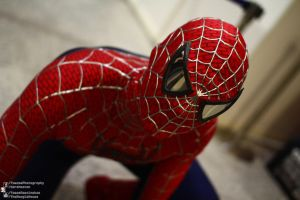 Spiderman Cosplay 2012.10.26 London MCM by TMProjection