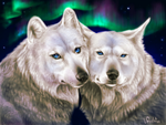 Aurora wolves by wang-POW