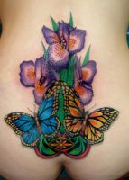 butterflies and irises by asussman