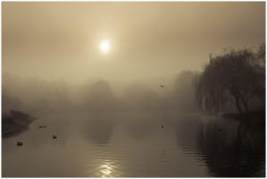 Misty pond 3 by Fun-Lovin-Criminal