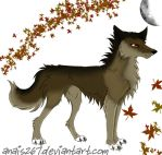 Wolf by anais267