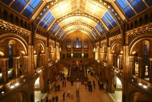 Natural History Museum London by cienki777