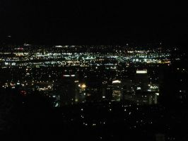 Downtown SLC by reggy66
