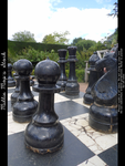 Black Pawns by Millie-Mops-Stock