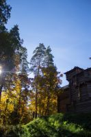 Fortress in the woods by Artursphoto