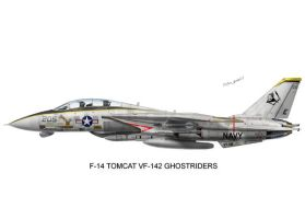 VF-142 Ghostriders Print by peter-pan03
