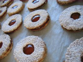 Linzer Sables by vanilla-angel555