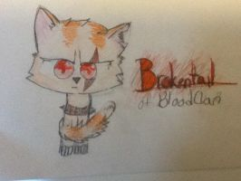 Brokentail for xxpegacatxx by cyancrap