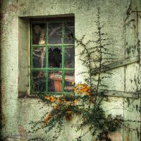 Decrepitude by irgendeine