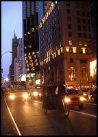 .::Fifth Avenue::. by Mew-Sumomo