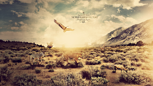 The Wild Enhanced by ZeyronDesigns