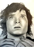 """Frodo Baggins"" by Leethatsme3"