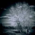 Arbol and the Girl by VexingArt