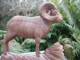 Bighornsheep 5 by woodcarve