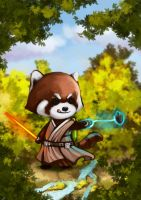 starwar master Raccoon by gtmade