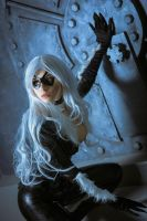 The Black Cat Cosplay by elenasamko