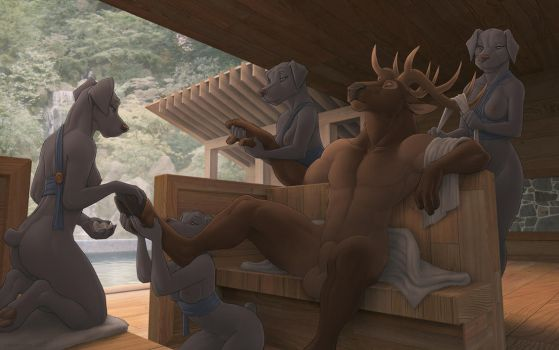 Elk at the Spa by zaush