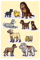 TEN dogs by emlan