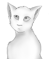 Cat by CheezBugerz