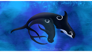 Orca and Pilot Whale by WeisseEdelweiss