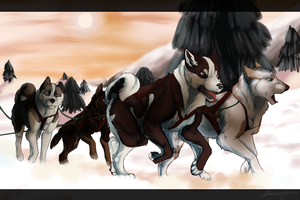 TKC-Christmas Sledding by Pockys-Kennel