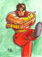 Sketchcard SF4 Guy by fedde