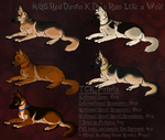 MGS Red Dawn X Reina  Novice Litter (Open!) by PittMixx