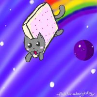 Nyan Cat by PinkStrawberryKitty