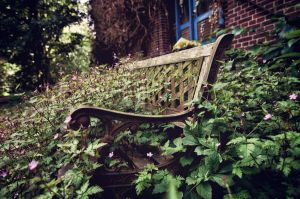 Abandoned Train Station Bench by B5160-R