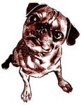 Pug by Roadkill-Catthouse