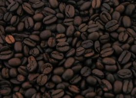 Coffee bean by LucieG-Stock