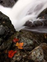 A Smooth Fall. by JamesStewart
