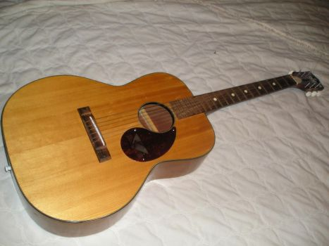 1960's Kay Acoustic Guitar! by thenuttydude15003