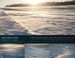 Snow Blown Pack by kuschelirmel-stock